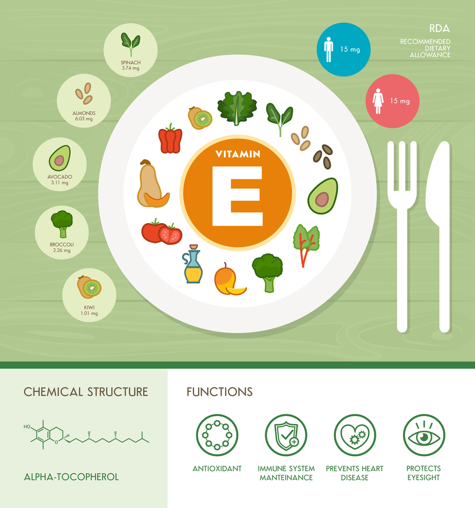 Vitamin E nutrition infographic with medical and food icons: diet, healthy food and wellbeing concept